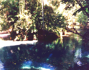 The Blue Pool, 1995